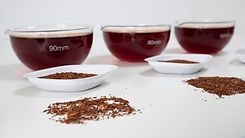 Rooibos in sensory lab at Cape Natural Tea Products