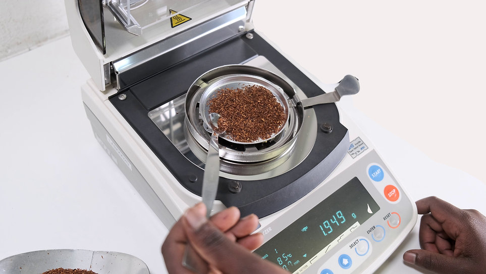 Rooibos moisture content measured at Cape Natural Tea Products laboratory food testing and safety