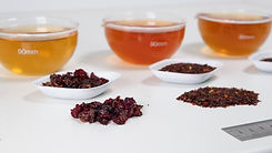 Rosehips in sensory lab Cape Natural Tea Products