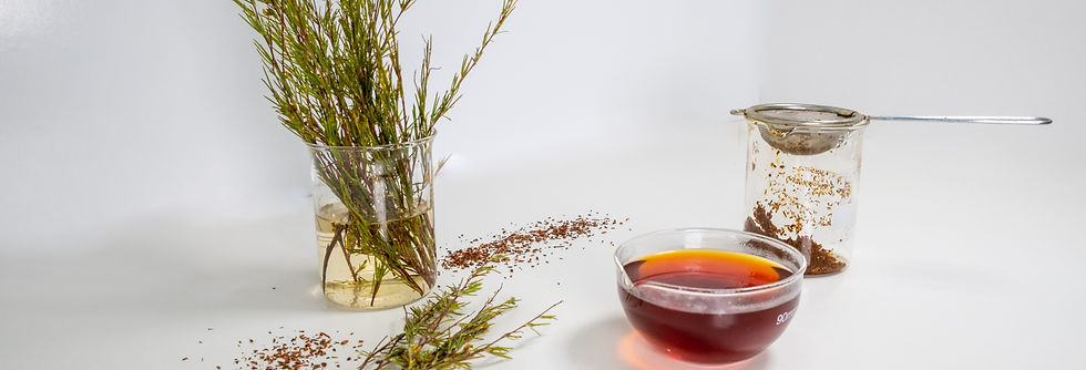 Rooibos Product Display at Cape Natural Tea Products Supplier of Bulk and Packed Rooibos Tea Organic and Conventional