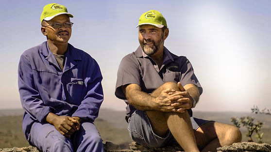 Rooibos Farming Discussion on a Life with Rooibos Tea Cape Natural Tea Products Bulk Supplier