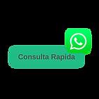 Consulta Rapida.png