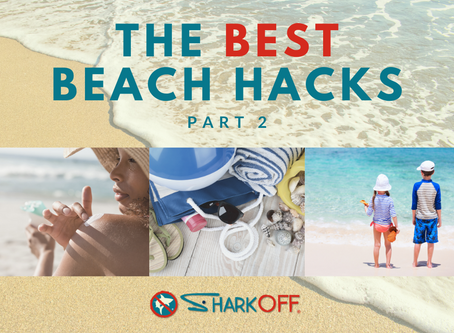 The Best Beach Hacks (Part 2)