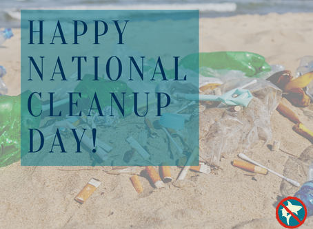 Happy National Cleanup Day!