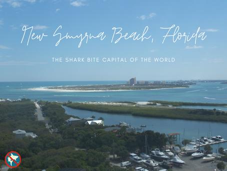 New Smyrna Beach, FL: The Shark Bite Capital of the World