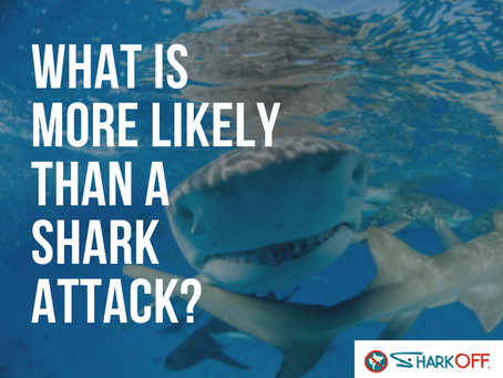 What is more likely a shark attack?