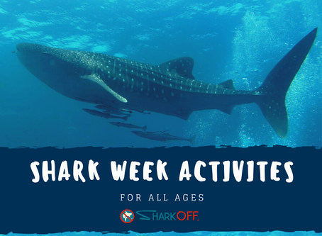 Shark Week Activities for All Ages
