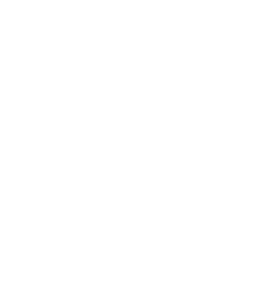 Ani-Connor-Symbol-White-CMYK.png