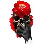 Skull and Peony