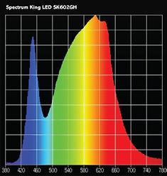 Spectrum SK602 GH.jpg