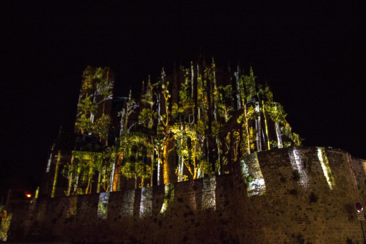 Chevet cathédrale St Julien - 3