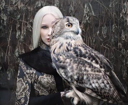 El Águila Y El Fénix- Parte II