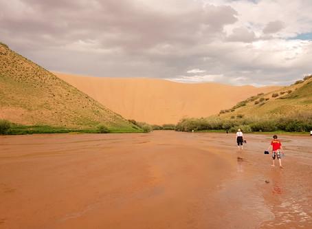Экспедиция в Монголию часть 2