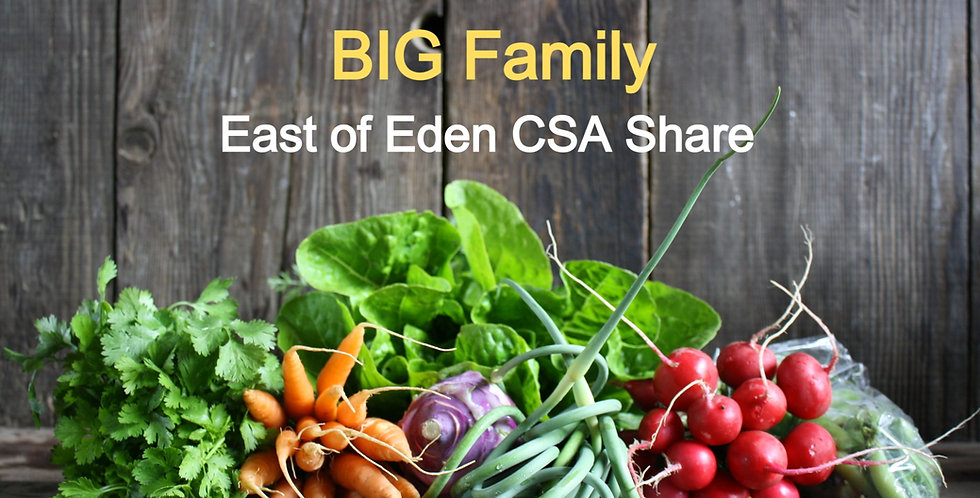 Full Size CSA Farm Share