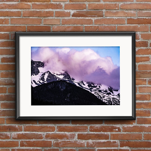 Large Limited Edition Print