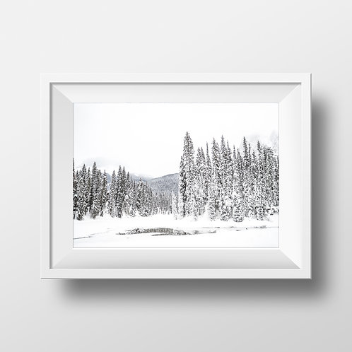 13 x 19 Print - Textured Paper