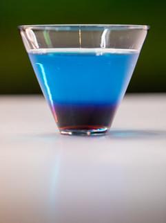 BirdiGolf_Drinks_Digi-3522.jpg