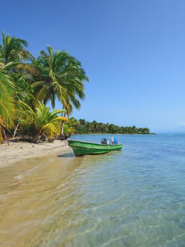 Avventura ai Caraibi data in programmazione