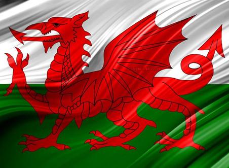Qual'è la bandiera più bella del mondo?