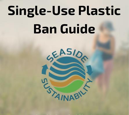 Single-Use Plastic Ban Guide