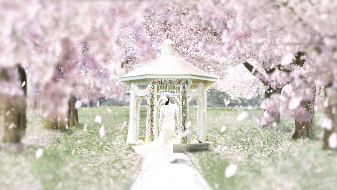 Illustration [Wedding]