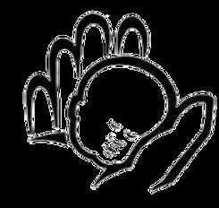 NSHA Logo.png