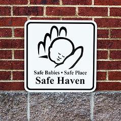 Safe-Haven-English-resized-768x768.jpg