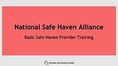 NSHA - Basic Training.png