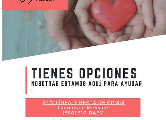 Safe Haven Spanish Poster