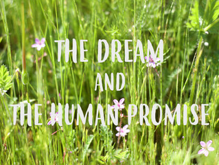 The Dream and the Human Promise: Deeper Acceptance and Transcendence