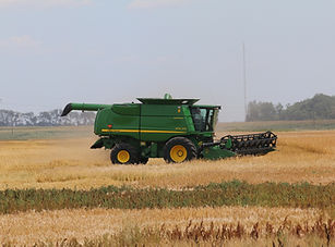Farming and Crop Insurance