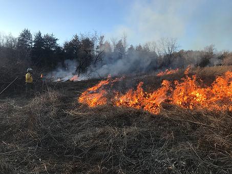 field fire during brian.JPG