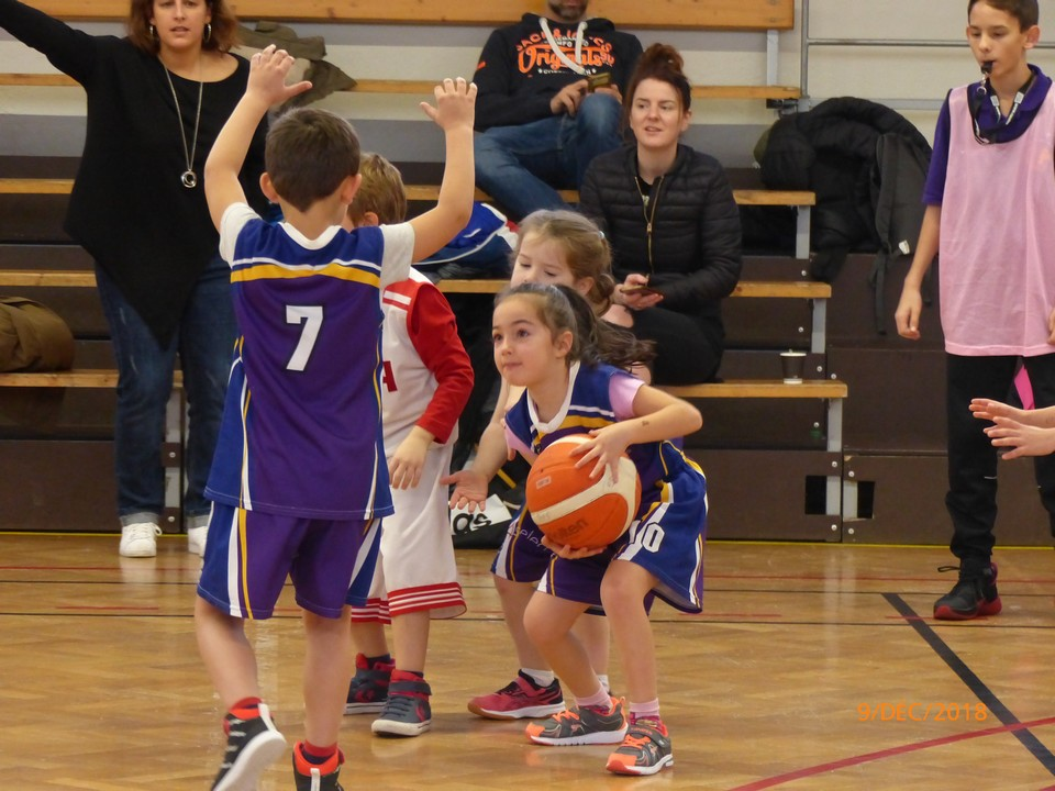 Baby Basket 9-12-18 -0026