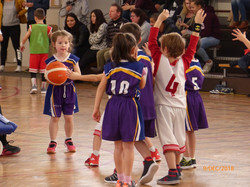 Baby Basket 9-12-18 -0032