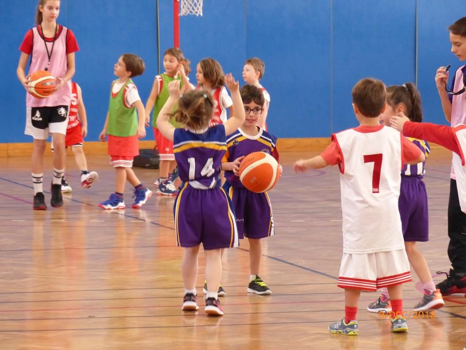 Baby Basket 9-12-18 -0031