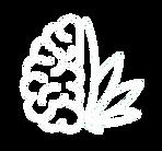 neurocannlogoflatwhite.png