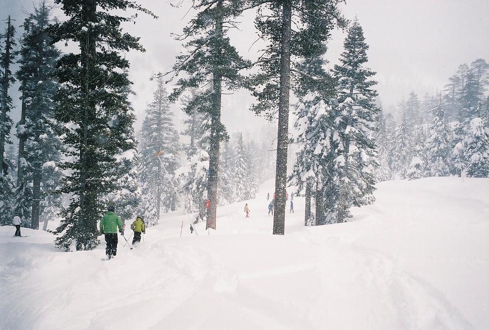 backcountry snow fall