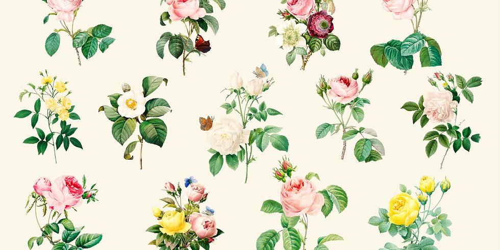 AUSGEBUCHT - Bachblüten für die Seele
