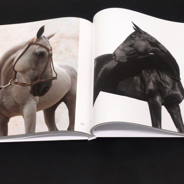 "The book of art photographs ""Polo&Horses""."