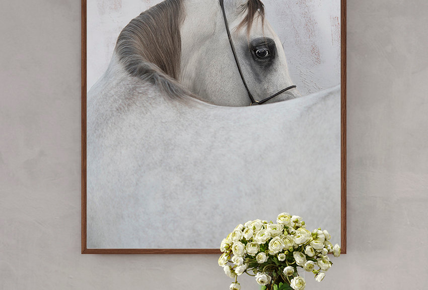 Arabian Horse I, from SIGHT series.