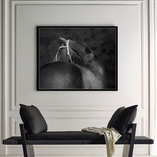 Open Quartz polo horse_