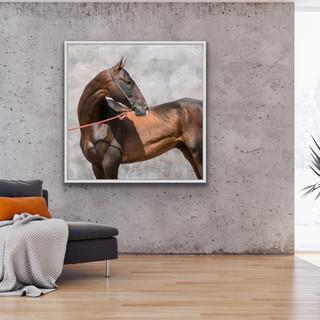 BashGan. Akhal-Tele Horse_
