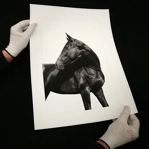 Fine art print on Hahnemühle paper_