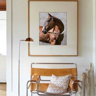 Polo horse Penca in Interiors.