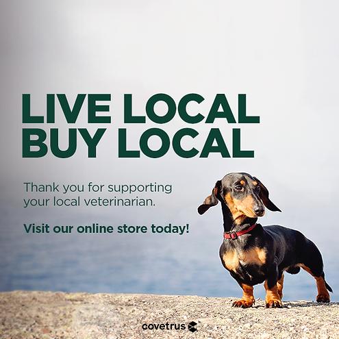 Local_Dog_Evergreen_FBPost_v3.png