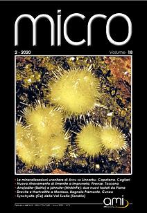 copertina 2020_2.png