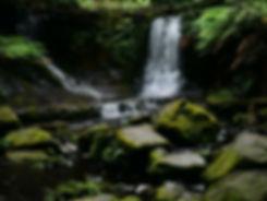 Nature .jpg