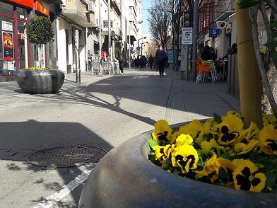 carrermajor_rubi.jpg