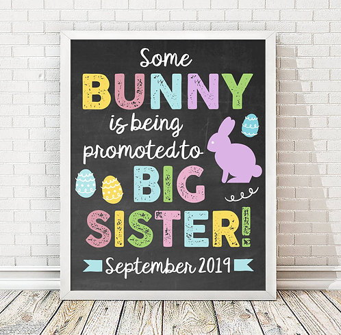 Bunny Big Sister Pregnancy Announcement