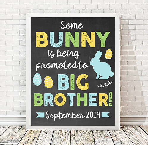 Bunny Big Brother Pregnancy Announcement